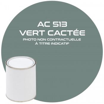 PEINTURE AC 513 VERT CACTEE ANNEE 69  1 KG