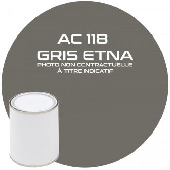 PEINTURE AC 118 GRIS ETNA ANNEE 66.67  1KG