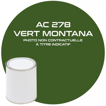 PEINTURE AC 278 VERT MONTANA 1 KG ou ac 405
